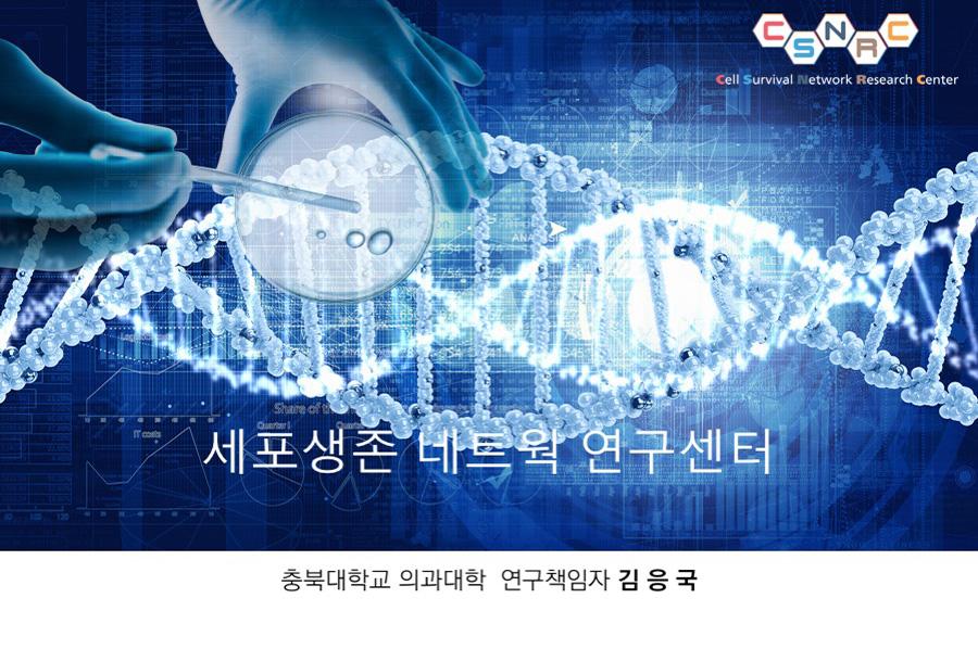 충북대학교연구발표PT